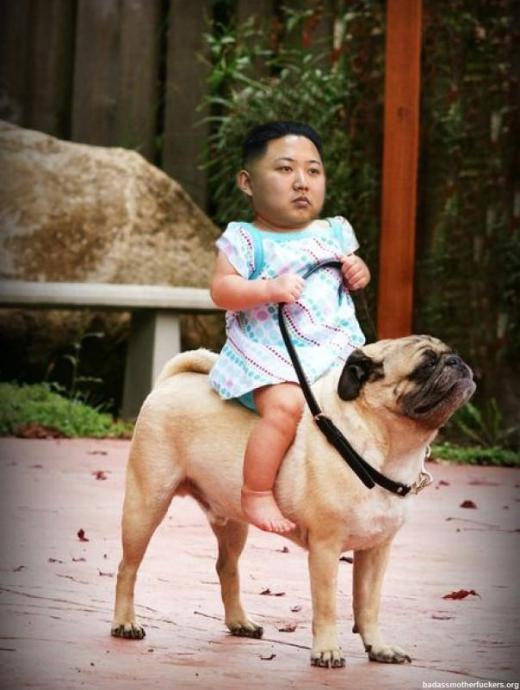 get along lil doggie!