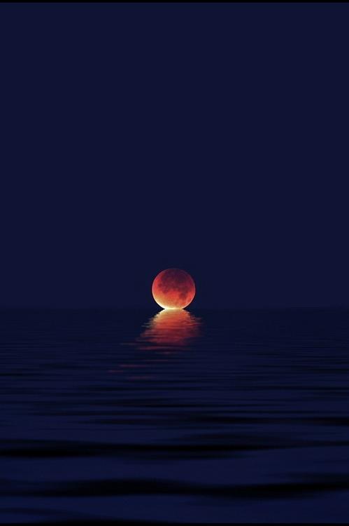 whoa-crazy-moon-cef7c540-sz499x750-animate